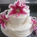 130x130 sq 1298052612581 cake77