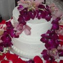 130x130 sq 1298052644596 cake89