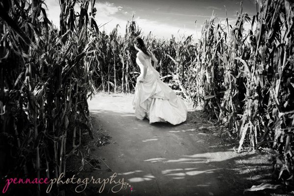 photo 9 of Pennace Photography