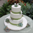 130x130 sq 1404405086430 succulent wedding cake watermarked