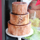 130x130 sq 1404405606718 woodsy wedding cake 3