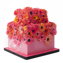 220x220 sq 1404404118255 flora wedding cake whipped bakeshop