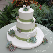 220x220 sq 1404405086430 succulent wedding cake watermarked