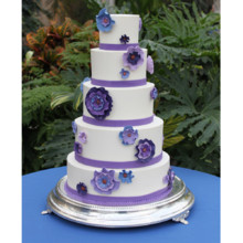 220x220 sq 1404405418814 modern blossom wedding cake main