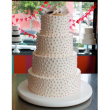 220x220 sq 1404405570213 raspberry dot wedding cake main