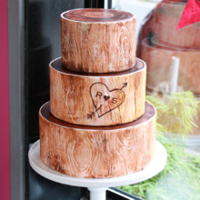 220x220 sq 1404405606718 woodsy wedding cake 3