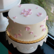 220x220 sq 1404406249303 pink blossom celebration cake main