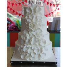 220x220 sq 1404412322505 white rose wedding cake 2