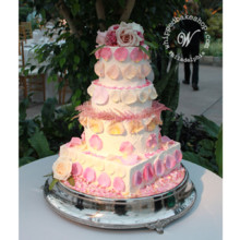 220x220 sq 1404412603868 candied rose wedding cake