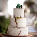 130x130 sq 1476370686879 w9236 birch bark wedding cake toronto6