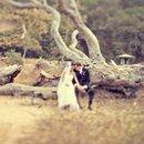 130x130 sq 1260992191206 wedding054
