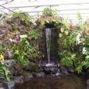 130x130 sq 1432330476709 orchid