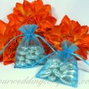 130x130 sq 1276119739491 aquaweddingfavorbags