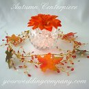130x130 sq 1316585471497 weddingcenterpiece79