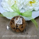 130x130 sq 1371583799952 cello bag cookie favor