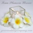 130x130 sq 1371583804090 plumeria flowers