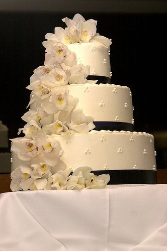 triple swiss dot wedding cake nbl cakes wedding cake fayetteville nc weddingwire 21270