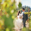 130x130_sq_1410552626376-wedding-portfolio-august2014-059