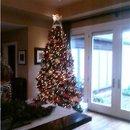 130x130 sq 1262992260005 christmastree2