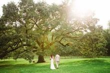 220x220 1464818342 c69d4b01695ed175 tree couple
