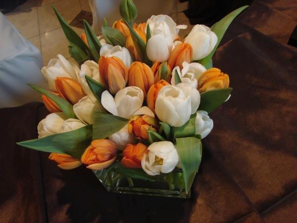 600x600 1466657717955 tulip