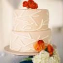 130x130 sq 1450720574844 annajayephotography cake vertical