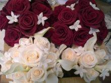 220x220 1311431092171 flowers2011069