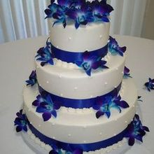 220x220 sq 1477613372 369d3b7f96aa2f1e electric blue orchid cake with dotted swiss design