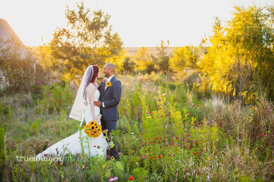 Willow Creek Glass Chapel Venue Shelby Ia Weddingwire
