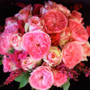 130x130 sq 1393522424450 pinkgardenrose