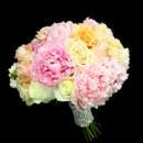130x130_sq_1393522428033-pinkpeonypeachcrea