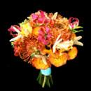 130x130_sq_1394224543249-orangestarfis