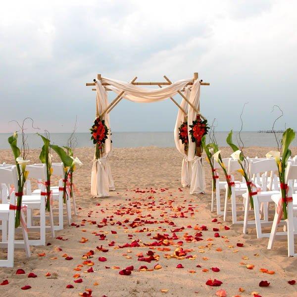 Beach Wedding Altar Ideas: Palette Of Petals, Wedding Flowers, Virginia