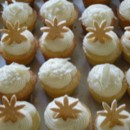 130x130 sq 1372438419979 white mini cupcakes