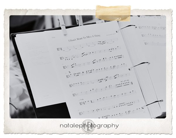 photo 25 of Natale Photography