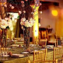 Lee James Floral Designs Flowers Orlando Fl Weddingwire