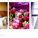 130x130 sq 1264096623592 weddingshow.058