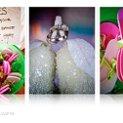 130x130 sq 1264096628577 weddingshow.061