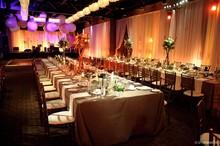 220x220 1397579175484 spectrum 5 lynn fletcher wedding