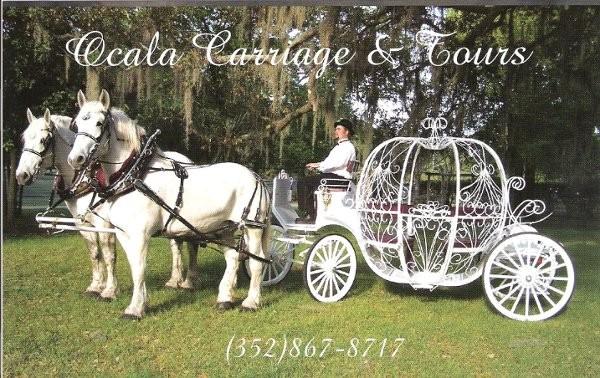 Ocala Carriage Tours Transportation Ocala Fl
