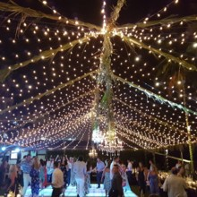 220x220 sq 1498064665309 amazing lighting structure martoca wedding