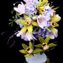 130x130_sq_1267500741934-cascadeorchid