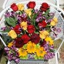 130x130_sq_1267503497810-gardenalter