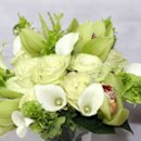 130x130 sq 1267504135828 greenandwhitebouquet