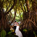 130x130 sq 1278376896077 hawaiiweddingphotographybyaleciahoytphotographer0009