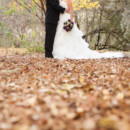 130x130_sq_1367056088064-arizona-wedding-photographer-105