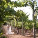 130x130 sq 1399410767041 vineyard pat