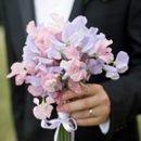 130x130 sq 1272295928341 weddingphotogallerypic3tuxedoholdingsweetpeas