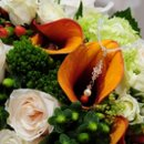 130x130_sq_1265763084124-orangegreen2
