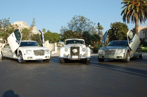 photo 30 of ELITE IMAGE LIMOUSINES